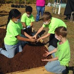 Lee County 4-H youth are hosting the second annual Old-Fashioned Family Fun Day on Saturday.