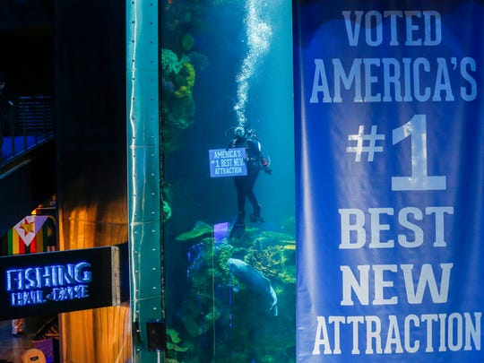 A diver holds a sign after it was announced that Wonders of Wildlife won the USA TODAY Best New Attraction online poll during a ceremony at the aquarium on Friday, Jan. 5, 2018.