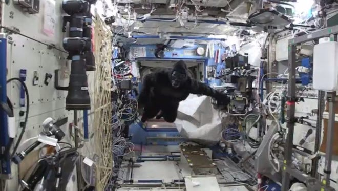 Astronauts aboard the international space station had a surprise visitor over the weekend, but it wasn't an alien.