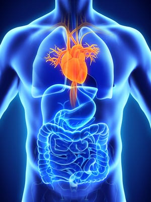 Healthcore, a Wilmington research firm, received funds to study heart disease.