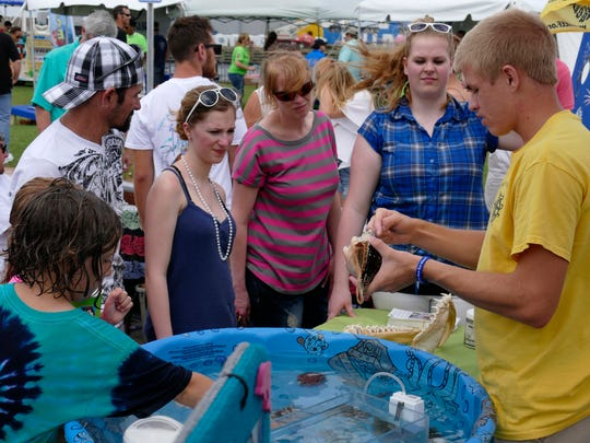 """A volunteer with the Navarre Beach Marine Science Station and Gulf Coast Discovery Center introduces visitors to local sea creatures using a """"touch tank."""" This display will also be at World Oceans Day on June 8 in Perdido Key."""