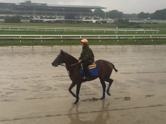 American Freedom walked and galloped over the sloppy Monmouth Park track Friday morning in preparation for the $1 million betfair.com Haskell Invitational, which will be run Sunday at Monmouth Park.
