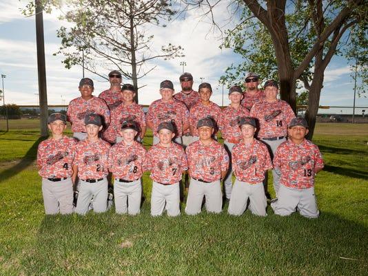 HDLL 11-12 Team Photo