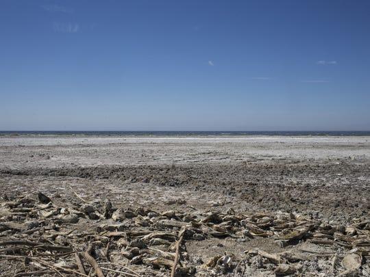Bombay Beach, August 18, 2014, the Salton Sea, California.