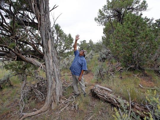 In this June 22, 2016, photo, Jonah Yellowman, a Navajo