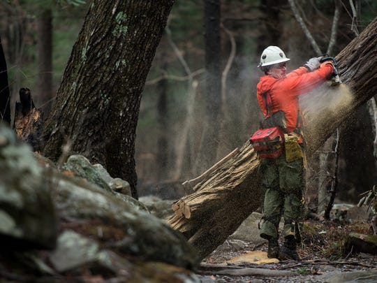 National Park Service firefighter Jeff Singer, from the Rocky Mountain National Park in Colorado, saws a damaged tree in the Great Smoky Mountains National Park near Gatlinburg, Tenn., Wednesday, Dec. 7, 2016. Hundreds of firefighters continue to conduct operations within the park as the Chimney Top 2 Fire is reported to be 64% contained as of Wednesday morning.