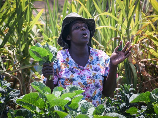 In the community garden down the street from the International Rescue Committee, Idzai Mubaiwa, originally from Zimbabwe, harvests collard greens, batching them for sale the following day at a street market.