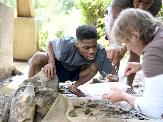 """Jerquayle Heard, 18, and Joele Emma, director of education for Asheville GreenWorks, work together to identify macroinvertebrates pulled from Mud Creek in Hendersonville with the Youth Environmental Leadership Program on Thursday, July 20, 2017. """"Before I got into the program I was more of an inside person so it was kind of breaking me out of my character,"""" he said."""