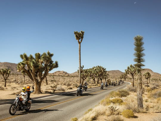 Babes Ride Out in Joshua Tree, Calif.