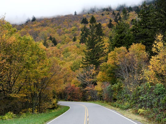 N.C. Highway 128 in Mount Mitchell State Park showed its fall colors on Tuesday, Oct. 10, 2017.