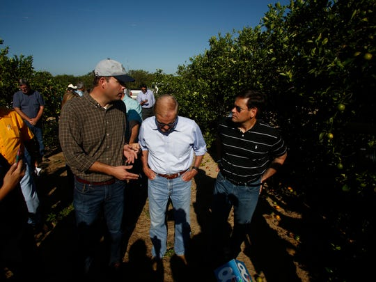 LAKE WALES, FL - SEPTEMBER 13:  US Sentors Bill Nelson, center, and Marco Rubio, right, tour the Story Grove orange grove where large numbers of oranges sit on the ground in the wake of Hurricane Irma