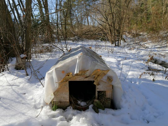 Pictured is one of the cat shelters in a wooded area behind Sara Silverstein's townhouse.