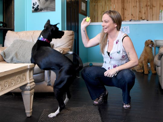 "Kim Brophey plays with Zeta during a consultation at her dog behavior center and store, The Dog Door, in downtown Asheville on Thursday, March 29, 2018. As a certified dog behavior consultant and applied ethologist she has recently written a new book called ""Meet Your Dog."""