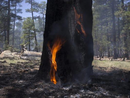 Stubbs Fire