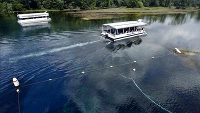 Wakulla Springs may be the largest spring in the world, discharging more than 500 million gallons of water daily