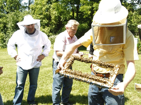 Beekeepers check out a cell of bees at the Purdue Bee