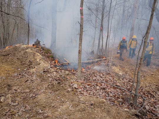 Leaf litter and other debris flame up as TVA, TWRA