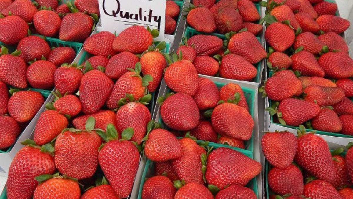 Albion strawberries are the first of the season from Rodriguez Brothers Farms in Oxnard and are available at the downtown Ventura farmers market.