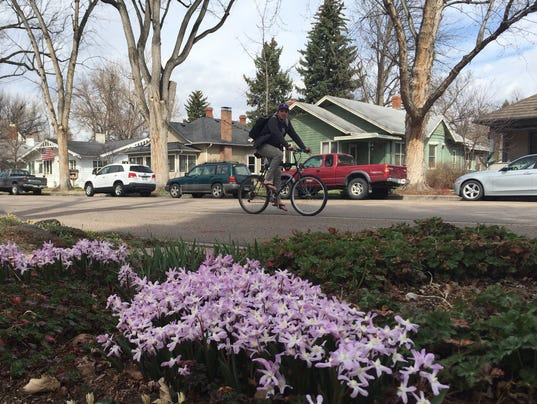 http://www.coloradoan.com/story/news/2017/03/27/fort-collins-end-march-snowless/99682208/
