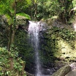 A waterfall in the El Yunque Rainforest, just 45 minutes outside San Juan.
