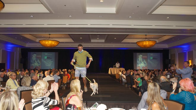 Model Robert Downing with canine companion on the catwalk.