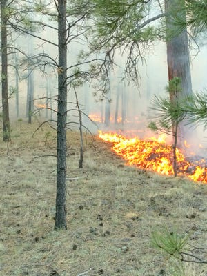 The Spur Fire is near the town of Luna and has grown to 27 acres. It's being managed by a team of about 15 personnel.