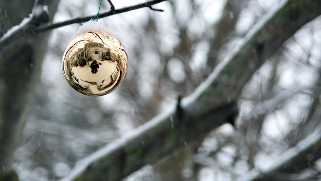 An ornament hanging from a tree branch that was found during the Frelinghuysen Arboretum's Winter Weekend Photo Scavenger Hunt.