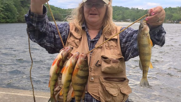 Carol bucked a vicious head wind to pull these plump