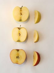(Top to bottom) A golden delicious apple, an opal apple and a sugarbee apple two hours after being cut.