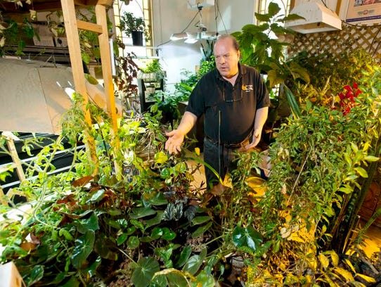 Rick Middlebrook, owner of Green Thumb Hydroponics