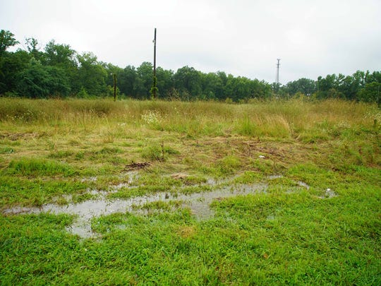 Vacant land donated by environmentalist on Red Lion Rd. near County Rd. that will be turned into parkland.