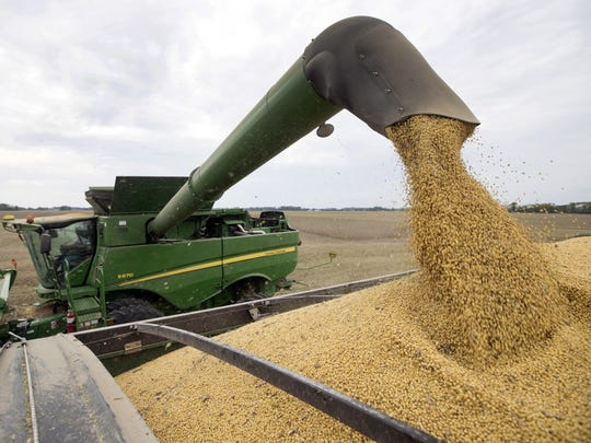"FILE - In this Sept. 21, 2018, file photo, Mike Starkey offloads soybeans from his combine as he harvests his crops in Brownsburg, Ind. The escalating trade war between the U.S. and China is causing anxiety among rural farmers and bankers. Upper Midwest soybean farmer Jamie Beyer says these are days of ""a little bit of panic."" Minnesota agriculture lender Kent Thiesse says most farmers were able to get financing for spring planting, but more federal aid might be needed to head off ""serious losses"" this fall."