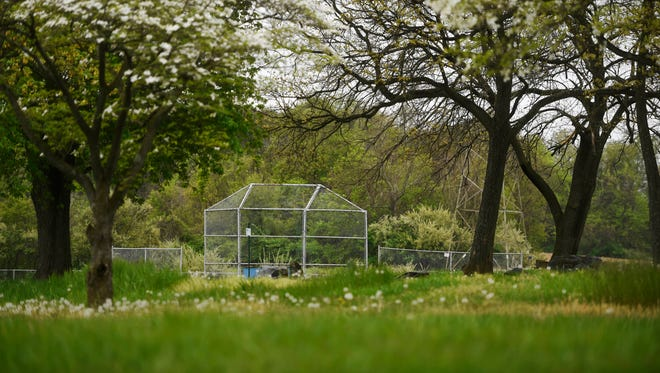 Holtwood Park has baseball fields, pavilions, parking and access to the Kelly's Run trailhead, a popular hike in Lancaster County.