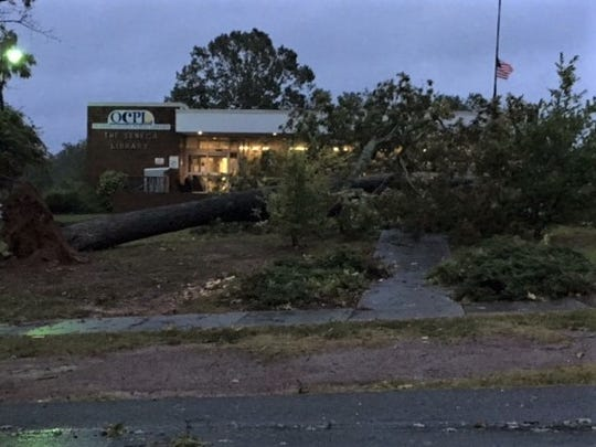 Oconee County Fire Chief Charlie King provided this picture of a tree downed overnight in front of the Seneca branch of the Oconee County Public Library.
