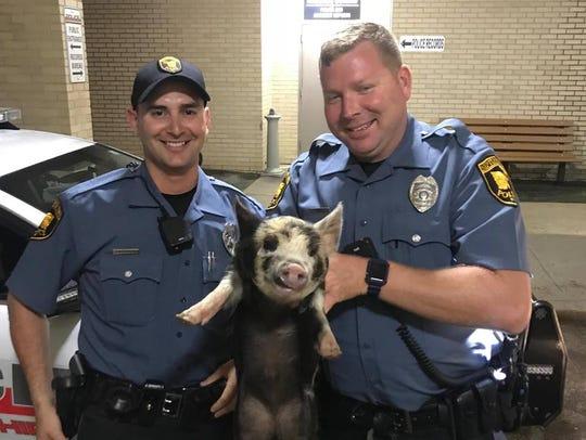 "P.O. Rosenthal (L) and P.O. Blewitt (R) with ""Pork"