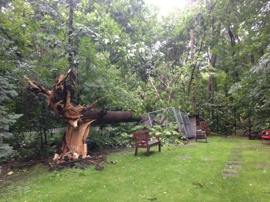A toppled tree lay in the backyard of Jean and Arlen Tenpas' house on Astra Drive in Waupun.