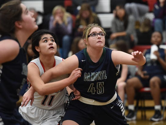 Damonte Ranch beat Wooster in girls basketball, 44-32,