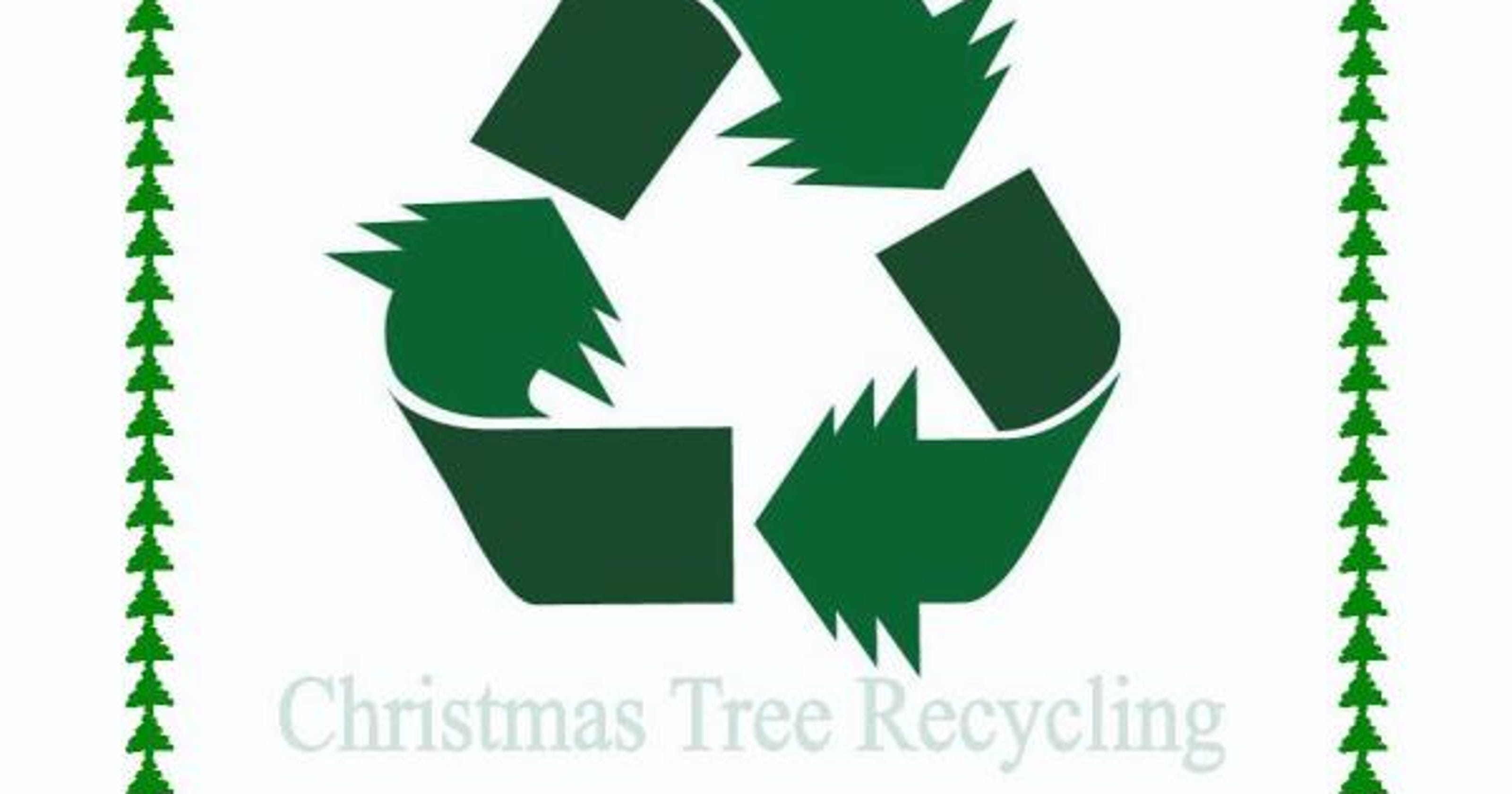 Recycle those Christmas Trees!