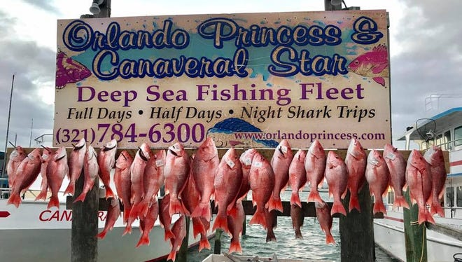 Red dead redemption? Red snapper fishing was good Friday for customers aboard the Canaveral Princess and Orlando Princess party boats out of Port Canaveral.
