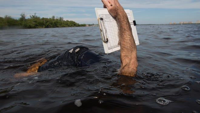 Rick Bartleson, a research scientist for the Sanibel Captiva Conservation Foundation documents shoal grass in the Caloosahatchee River.