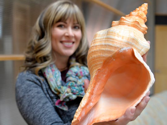 Shelley Turk loves traveling to tropical climates and searching for sea shells.  She shows off one of her most prized shells, a large intact conch shell she found while vacationing in Florida.