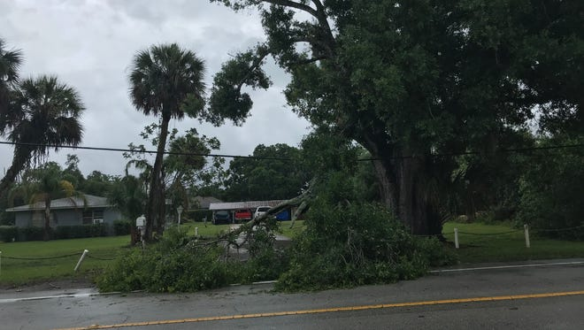 A tree branch fell on the road in the area of 58th Avenue and 41st Street in Indian River County after storms rolled through May 14, 2018.