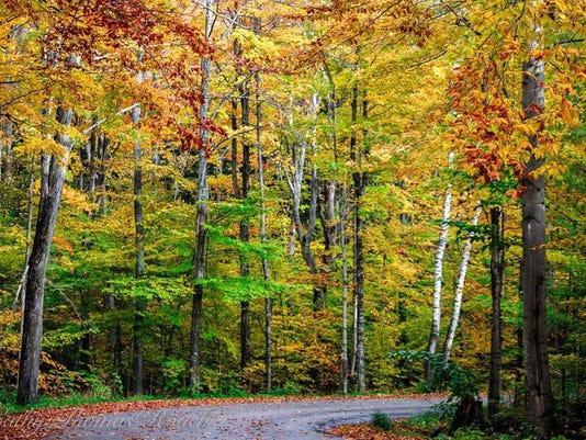 Door County Fall Colors