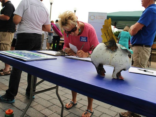 A flying pig decorates a campaign booth for Democrat Kim Weaver, running in Iowa's 4th Congressional District.