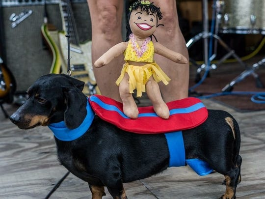 The third annual Surftoberfest on Oct. 7, 2017, will feature a Stein holding contest, a chicken dance contest, a best-dressed Weiner contest — for furry friends.