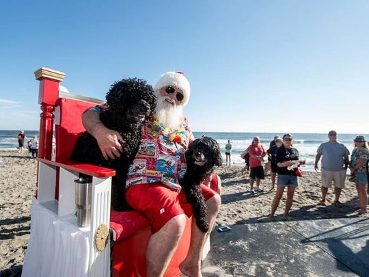 These two delightful doggies - and a surfin' Santa,