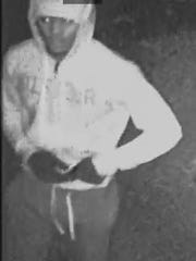 Police are looking for this man in connection with a home invasion near Elsmere.