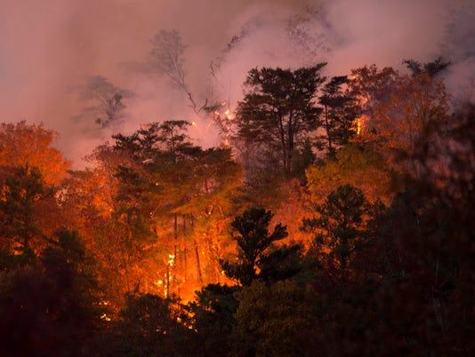 blount wildfire 1