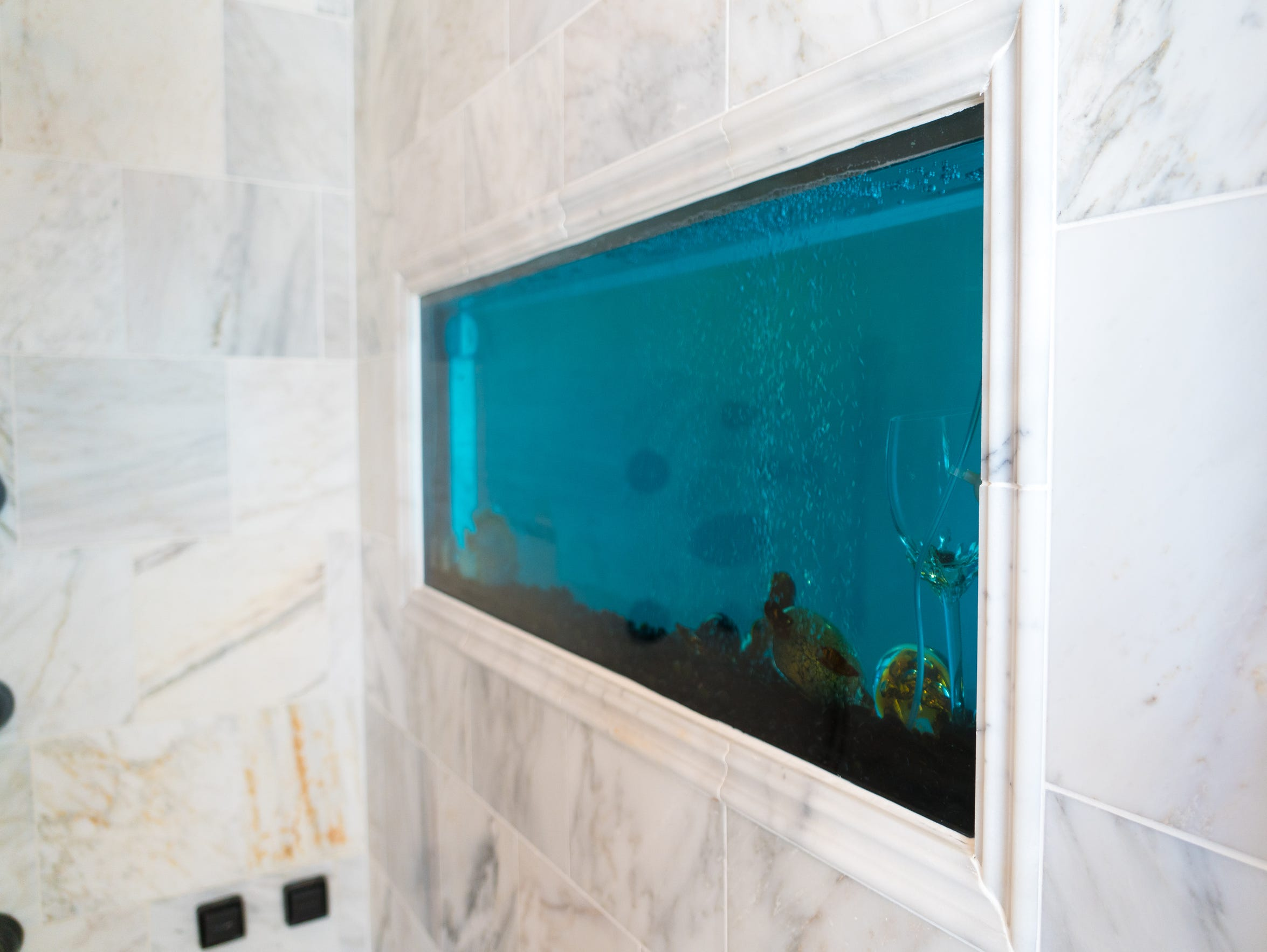 A large aquarium separates the shower from the toilet
