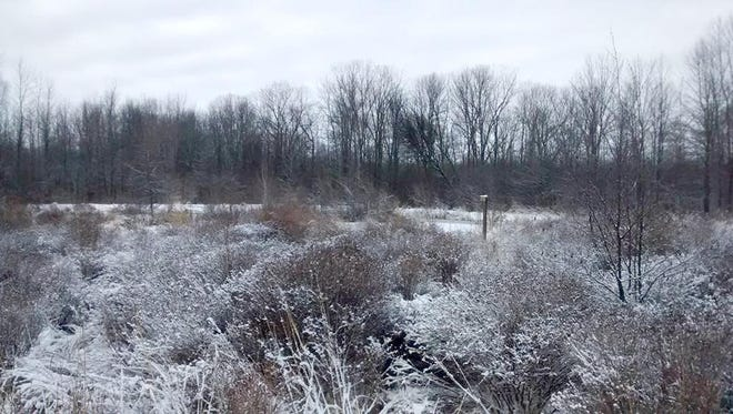 A late winter frosty morning at Woodland Dunes Nature Center and Preserve in Two Rivers.